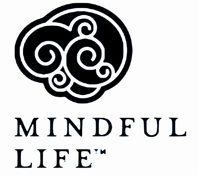 mindful-life-dr-kristen-race