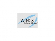 Wings logo boxed